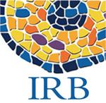 110715-irb
