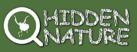 Hidden nature prepara un directorio de revistas de divulgación científica