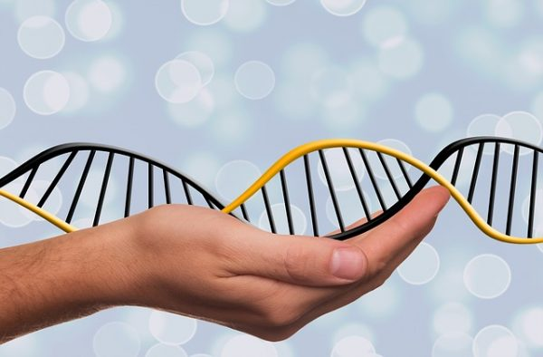 Tres de cada cuatro personas aprobarían el uso de la edición genética en adultos con fines terapéuticos