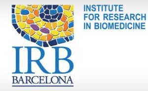 Job position at IRB Barcelona: Public Engagement and Education Officer