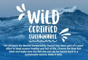 La ONG de pesca sostenible MSC busca responsable de medios